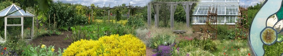 Friends of Yalding Organic Gardens
